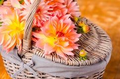 Autumn dalia Royalty Free Stock Images