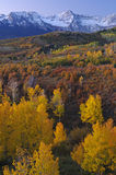 Autumn, Dallas Divide Royalty Free Stock Image