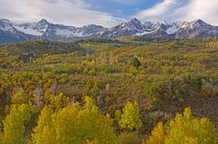 Autumn Dallas Divide. Autumn aspens, Dallas Divide, San Juan Mountains, Colorado, USA stock images