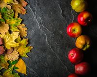 Autumn dark background or frame of fallen yellow leaves and ripe red apples. Frame for text or photo. Applicable for an Stock Photography