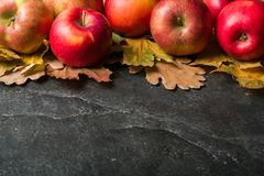 Autumn dark background or frame of fallen yellow leaves and ripe red apples. Frame for text or photo. Applicable for an Stock Photos