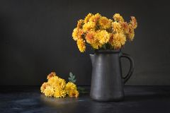 Autumn dark still life. Fall with yellow chrysanthemum flowers in clayware vase on black. Copy space royalty free stock image