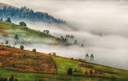 Autumn dawn. beautiful dawn in the Carpathian mountains Stock Photography