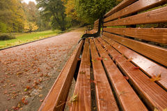 Autumn day Royalty Free Stock Photography