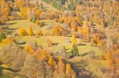 Autumn day. Sunny autumn day in October Stock Image