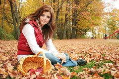 Autumn day. Young woman sit in red leaves in a park with a basket with apple Stock Images