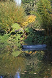 Autumn day at Beth Chatto's Gardens. Autumn colours reflected in the lake at Beth Chatto's Gardens on a bright sunny day Stock Photo