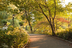 Autumn Day in Central Park New York Stock Image
