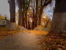 Autumn day. In city Stock Photography