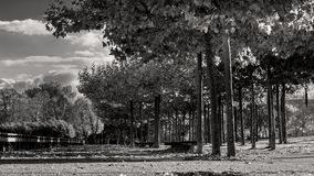 Autumn day in city park. A sunny day in the city park of Metz, France royalty free stock photos