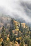 Autumn day in the mountains. Caucasus, Russia Royalty Free Stock Photo