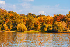 Autumn day in park Royalty Free Stock Photos