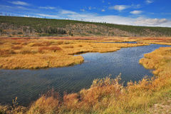 The autumn day -  stream in Yellowstone Royalty Free Stock Images