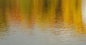 Autumn daylight landscape reflected in water. Autumn daylight colored landscape reflected in water stock video footage