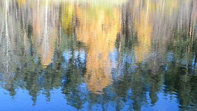 Autumn daylight landscape reflected in water, stock footage