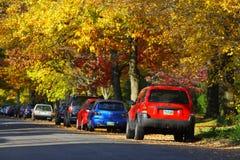 Autumn Days stock afbeelding