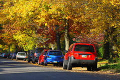 Autumn Days Imagen de archivo