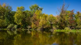 Autumn deciduous forest and river on a sunny day. Amazing landscape. Ukraine. Europe stock photography