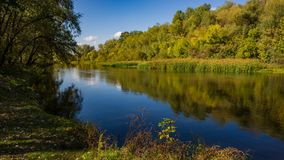Autumn deciduous forest, water river and the river bank on a sunny day. Amazing landscape. Ukraine. Europe stock photography