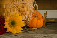 Autumn Deco with Pumpkins and Sunflowers Stock Images