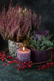 Autumn decor with a heather Royalty Free Stock Image