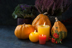 Autumn decor with candle and flowers Royalty Free Stock Photo