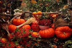Autumn decor with pumpkin stock image