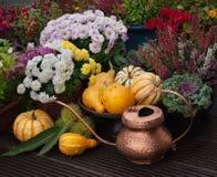 Autumn decor with pumpkins Stock Photos