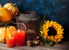 Autumn decor Stock Image