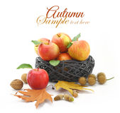 Autumn decorated basket Stock Images