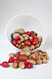 Autumn decoration. Several nuts, rose hips and oaks with bowl on white Stock Photos