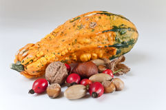 Autumn decoration. Several nuts and a pumpkin on white background Stock Photography