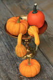 Autumn decoration Royalty Free Stock Image