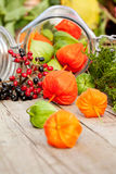 Autumn Decoration Stock Photos