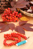 Autumn decoration Stock Photos