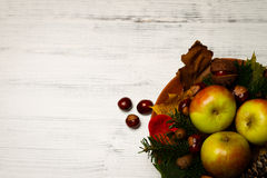 Autumn decoration. With apples, acorn, chestnut and a fircone in a wooden bowl on white wood Stock Image