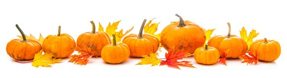 Autumn decoration arranged with dry leaves and pumpkins i royalty free stock images