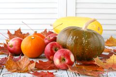 Autumn decoration arranged with dry leaves, pumpkins and more Royalty Free Stock Photo
