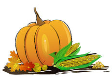Autumn decoration arranged with dry leaves, pumpkins and more. Autumn decoration arranged with dry leaves, pumpkins and corn, isolated on white, wide format vector illustration