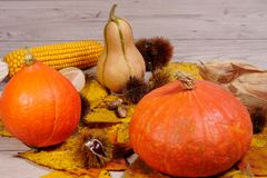 Autumn decoration arranged with natural elements such as colorfu Royalty Free Stock Photos