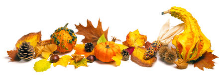Autumn decoration arrangement Stock Images