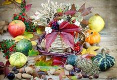 Autumn decoration - autumn harvest Royalty Free Stock Photos