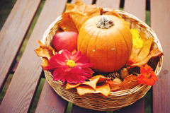 Autumn decoration. Basket with pumpkin, dahlia and leaves Stock Photo