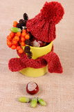 Autumn decoration with cup wrapped scarf and woolen cap on burlap Royalty Free Stock Images