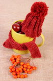 Autumn decoration with cup wrapped scarf and woolen cap on burlap Stock Images