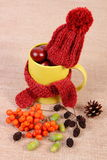 Autumn decoration with cup wrapped scarf and woolen cap on burlap Stock Photography