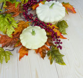 Autumn decoration of cymbling Royalty Free Stock Photography
