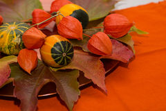 Autumn decoration - decorative pumpkin and bladder cherry Stock Images