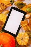 Autumn decoration Stock Photo