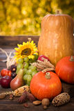 Autumn decoration Royalty Free Stock Photos